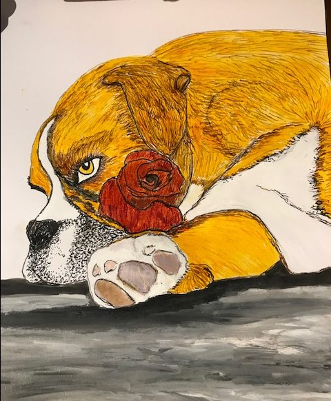 boxer dog in ink by Vanessa Hicks
